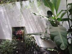 laboratorio garden